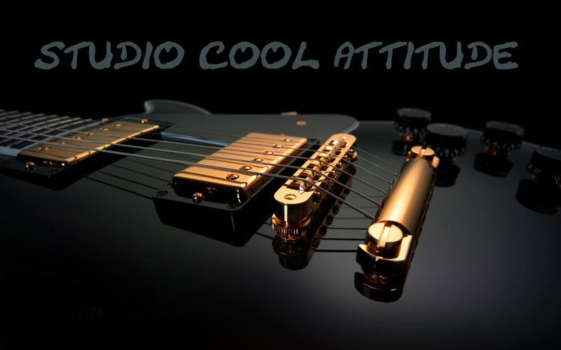Guitare Verdol